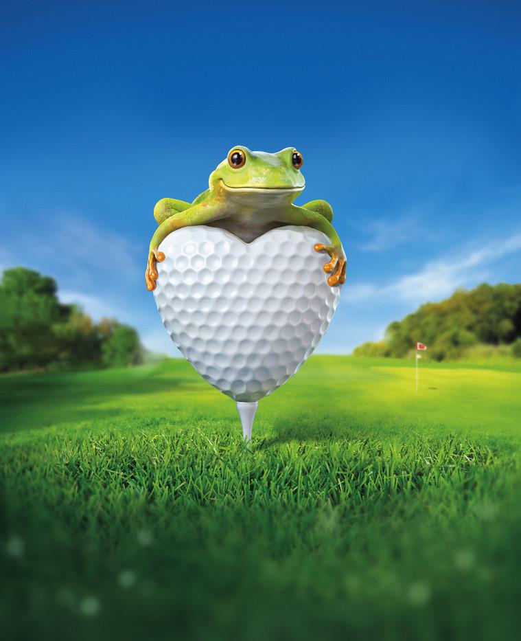 aaagolf-frog-.jpg