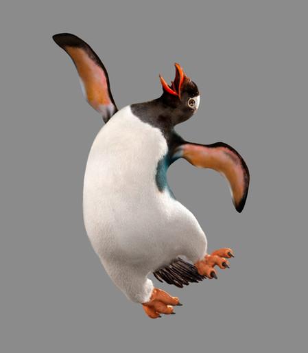 pinguin-dancing-13-09.jpg