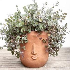 Egy Small Face Pot