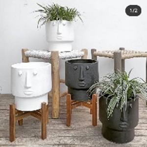 White Robby Pot