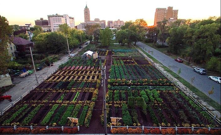 L'Agrihood de Detroit - Miufi