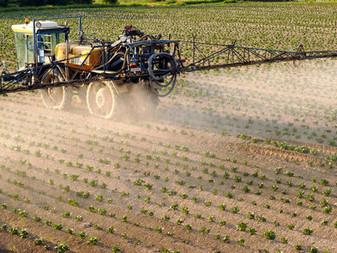Les riverains des champs sont exposés à un cocktail de pesticides