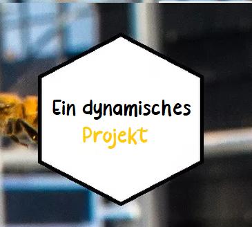 ALL un projet dynamique