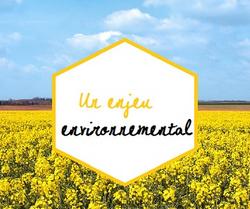 un enjeu environnemental_edited