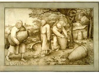 Les énigmatiques « Apiculteurs » de Pieter Bruegel L'Ancien, dessin, 1568