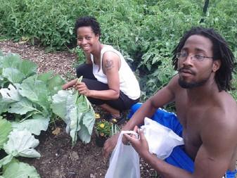 Ravagée par la crise économique, Detroit renaît de ses cendres avec l'agriculture urbaine