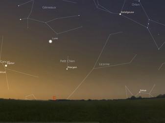 D'ou vient le mot canicule? Une histoire de chiens et d'étoiles.