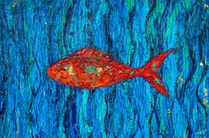 Fisch gegen den Strom