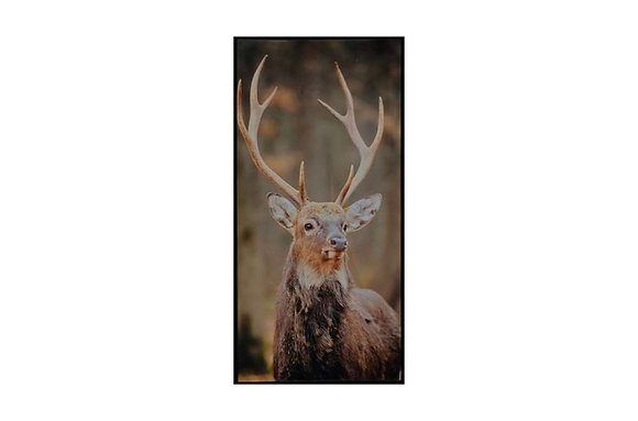 Stag Glass Wall Art