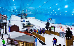 Ski Dubai (Mall of the Emirates)