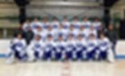 2019-2020DHSVarsityHockey-1.jpg