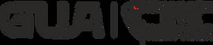 Snakey eye GUA black logo june 2019 PNG.