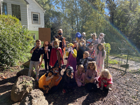 Lower Elementary October 26-30: Baby Chicks, Field Trips, Pumpkins and Halloween!