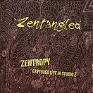 Zentropy: Zentangled 2012