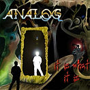Analog: It Is What It Is 2008