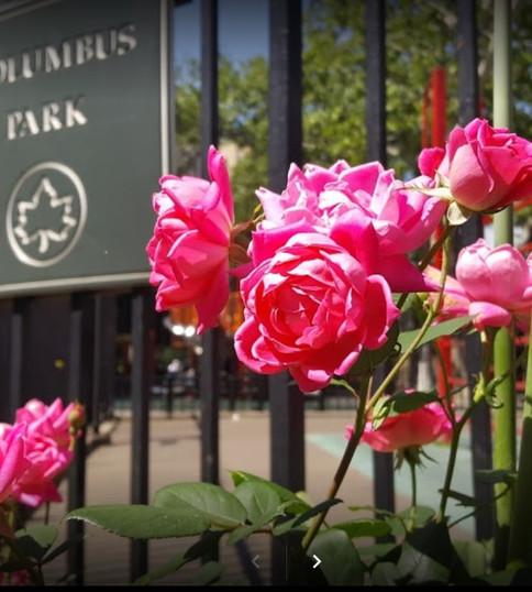 columbus-park_orig.jpg