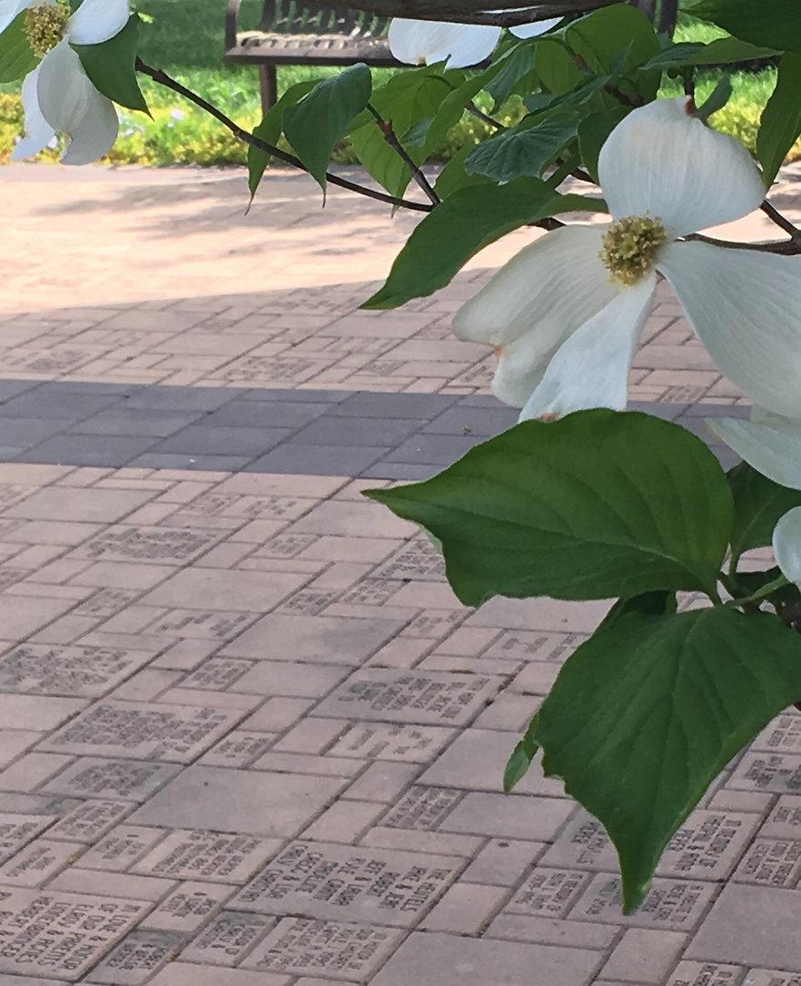 St. Lucas UCC Tribute Garden