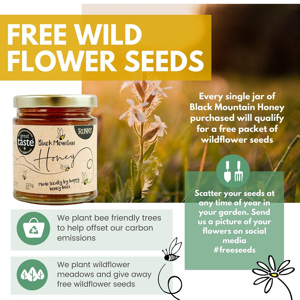 6. Free Seeds Amazon.png