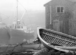 Foggy Harbor 2