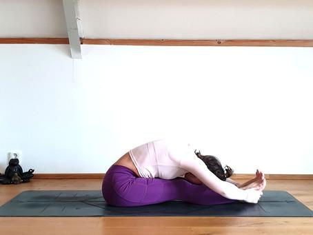 Een goede start: Yoga Cursus Zonnegroet