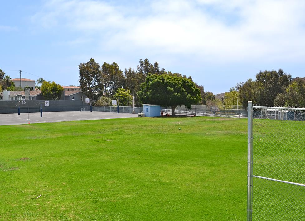 Webster Upper Field