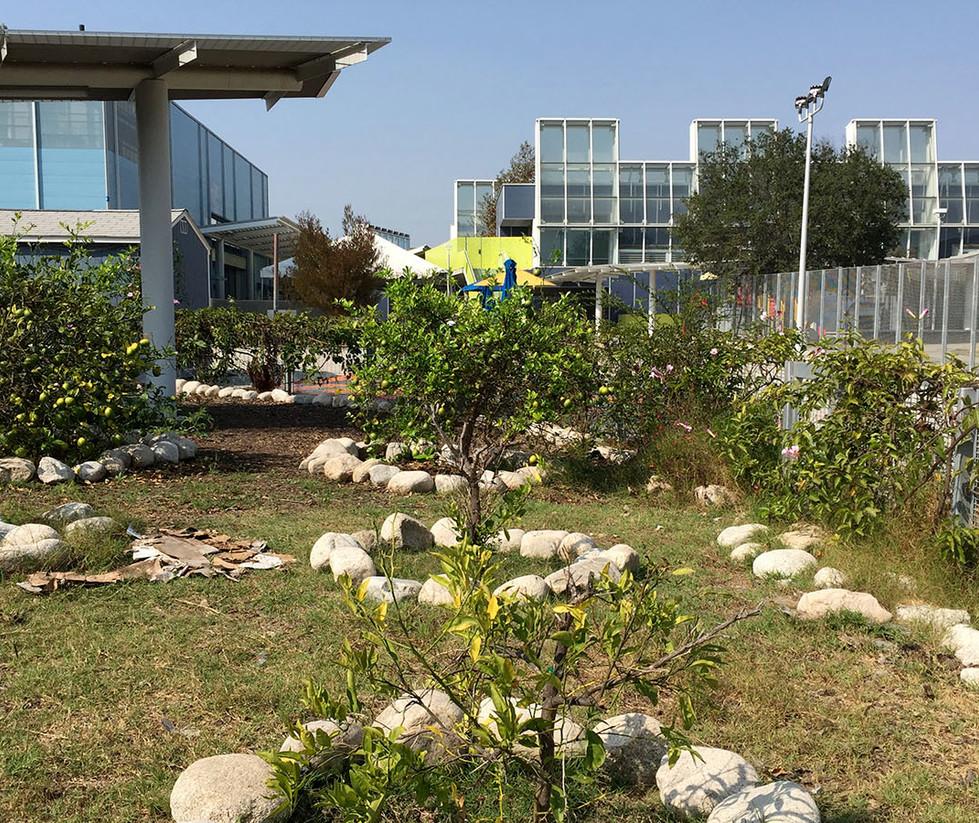 Edison Language Academy Garden