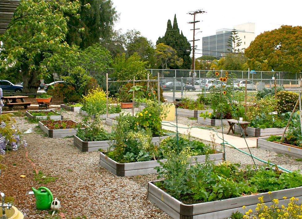 McKinley Garden