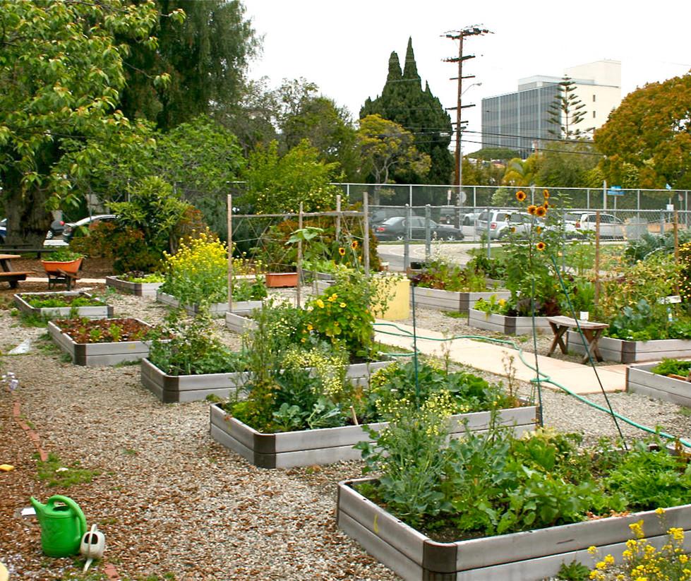 McKinley Elementary School Garden