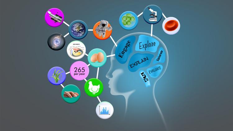 Student digital resource