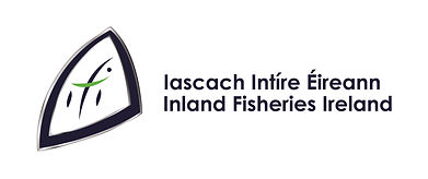 IFI Logo Positive lrg.jpg