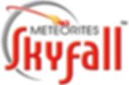 skyfall-logo-Jan2020.jpg