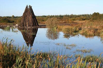 Autumn at Lough Boora.jpg
