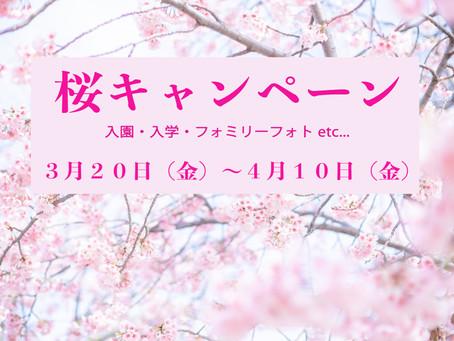 期間限定☆桜キャペーン