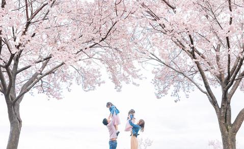 大阪市・堺市で安心料金のキッズフォトスタジオ|写真スタジオのアオフォト86.jp