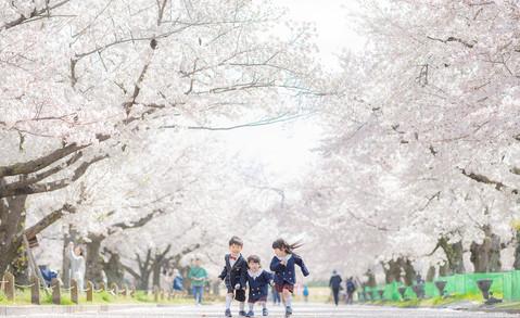 大阪市・堺市で安心料金のキッズフォトスタジオ|写真スタジオのアオフォト51.jp