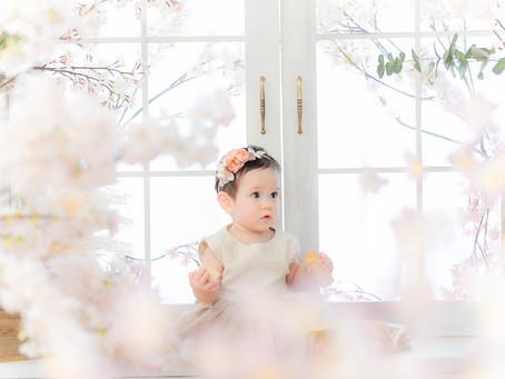 期間限定!季節の花🌸桜コーナー🌸(3/16〜4/30)