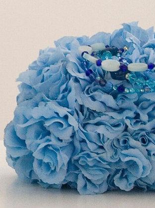 Baby Blue Shortcake