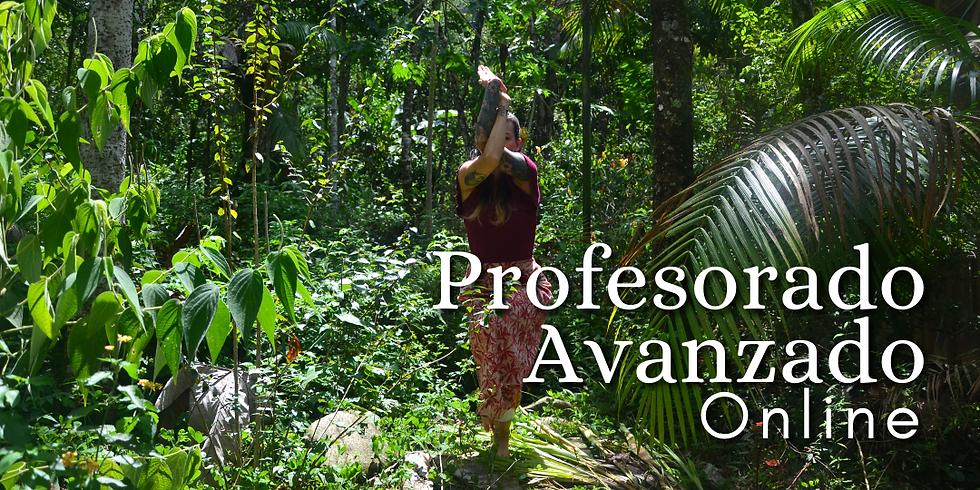 Profesorado Online de Yoga Avanzado y Sadhana Profunda