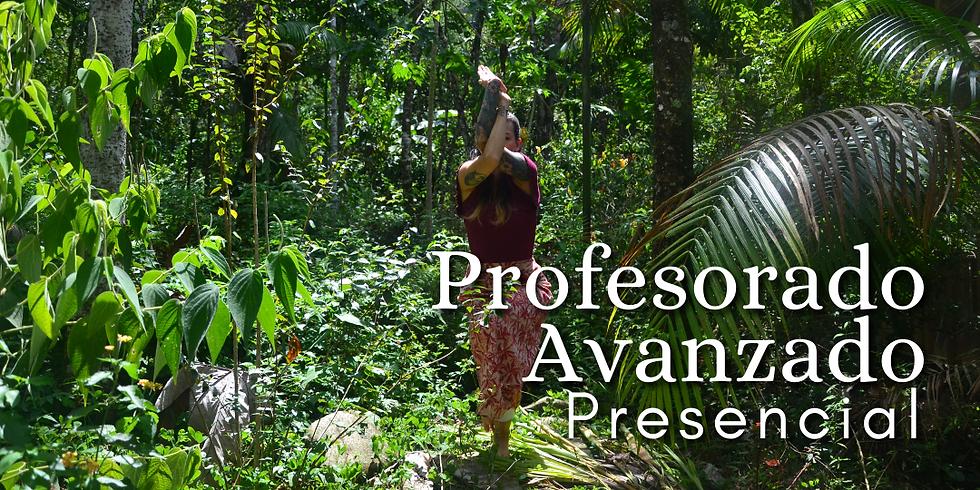 Profesorado Presencial de Yoga Avanzado y Sadhana Profunda