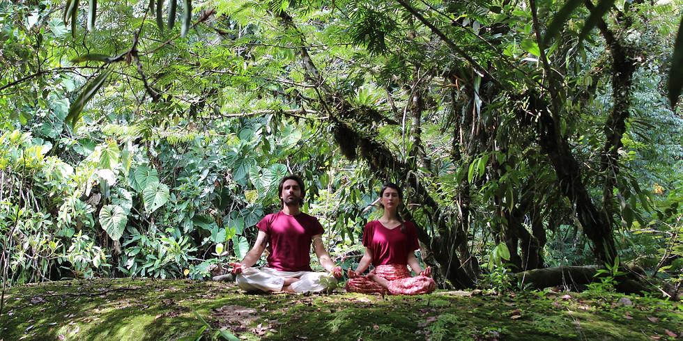 Curso Online de Meditación