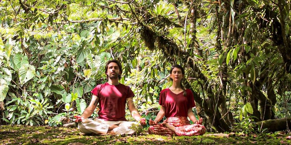 Retiro de Yoga para Principiantes