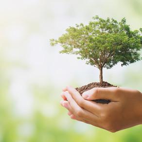 Μία νέα Κοινωνική Συμφωνία για το περιβάλλον και τη νέα γενιά