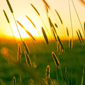 ΚΕΠΑ: Προτάσεις για δέσμη 5 προτεραιοτήτων για τα Σχέδια Βιώσιμης Ανάκαμψης των μελών του ΟΣΕΠ