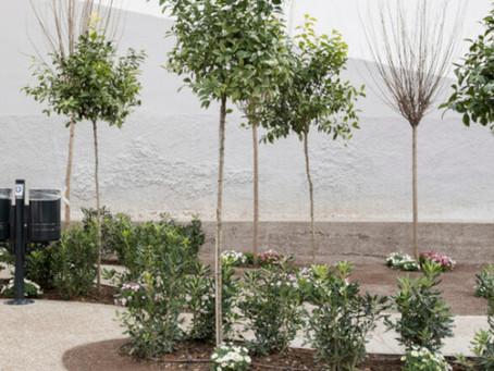 Το Reuters αποθεώνει τα πάρκα τσέπης που δημιουργεί ο Δήμος Αθηναίων