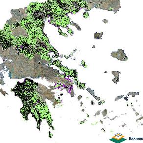 Προς επίλυση τα προβλήματα δασικών χαρτών