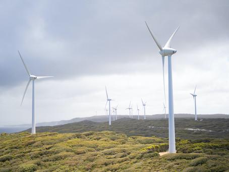 IUCN: Νέα έκθεση για τη σημασία της Αιολικής Ενέργειας στην προστασία της Βιοποικιλότητας