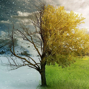 Μεσόγειος: Χειμώνας ή καλοκαίρι