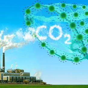 Τρόποι δέσμευσης CO₂ από την ατμόσφαιρα