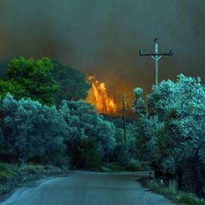 16 εκατ. στρέμματα έχουν καεί στην Ελλάδα από το 1980
