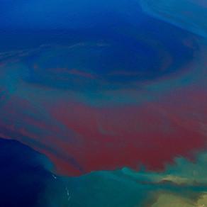 H κόκκινη παλίρροια απειλεί τη Φλόριντα